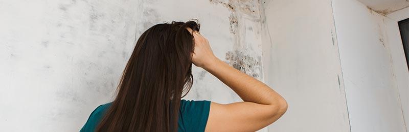schimmel op vochtige muren